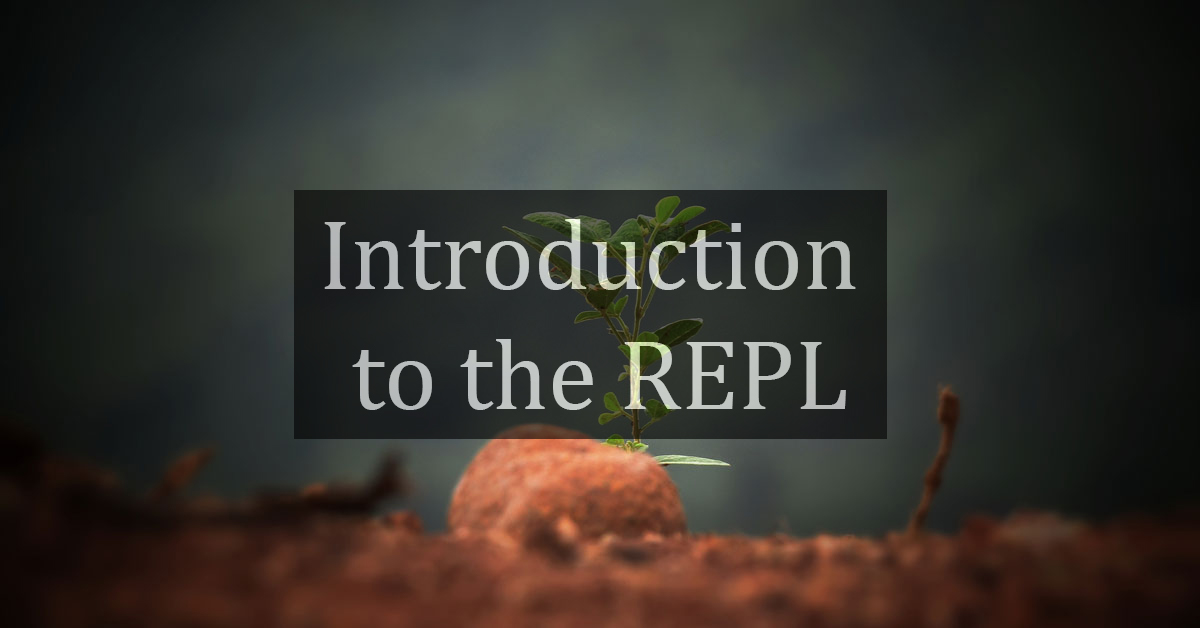 Introduction to the REPL